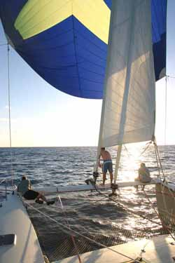 Chris White Designs A46 Spinnaker